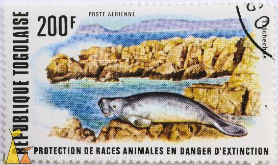African Manatee, Republique Togolaise, Togo, stamp, mamma, 200 F, Poste Aerienne, Trichechus, Trichechus senegalensis
