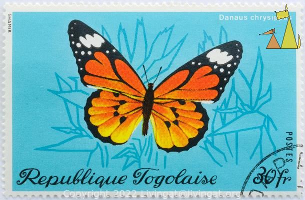 African Monarch, Republique Togolaise, Togo, stamp, insect, butterfly, Postes, Shamir, 30 fr, Danaus chrysippus