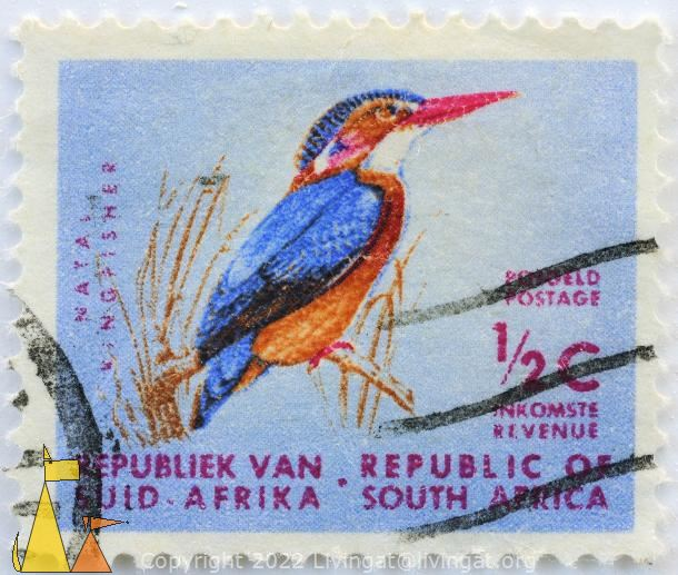 African Pygmy Kingfisher, Republik van Suid-Afrika, Republic of South Africa, South Africa, stamp, bird, postgeld, postage, ½ C, Natal Kingfisher, Ispidina picta, Ceyx pictus