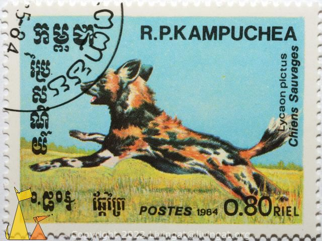 African wild dog, R.P. Kampuchea, Cambodia, stamp, mammal, Postes, 1984, 0.80 Riel, Chiens Sauvages, Lycaon pictus