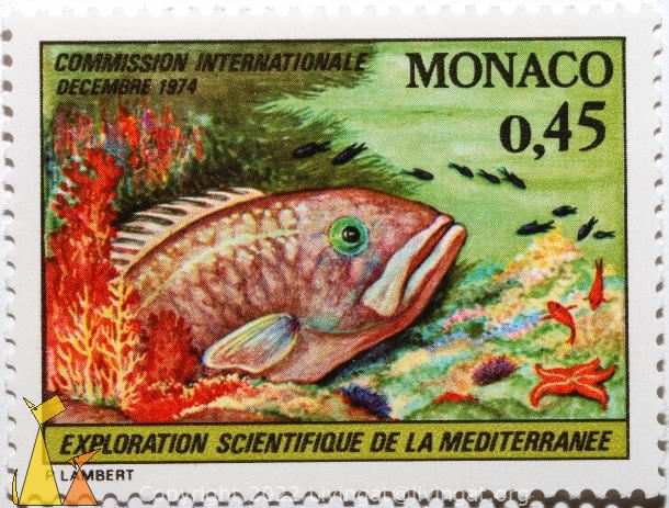 Anemones, Monaco, stamp, underwater, anemones, Exploration Scientifique de la Mediterranee, Decembre, 1974, 0.45, Comission Internationale, P. Lambert