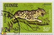 Angry Leopard, Republique de Guinee, Guinea, stamp, Panthera pardus, mammal, 30 F, Panthere, Postes