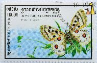 Apollo, Royaume du Cambodge, Cambodia, stamp, insect, butterfly, Postes, 1998, 1000 R, Parnassius apollo