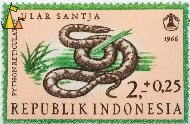 Asiatic Reticulated Python, Republik Indonesia, Indonesia, stamp, reptile, snake, 2+0.25, 1966, Ular Santja, Python reticulatus