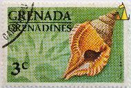 Atlantic distorsio, Trenada Grenadines, Grenada, stamp, shell, 3 c, green, Distorsio clathrata