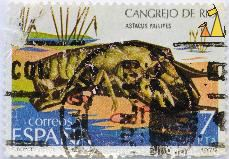 Atlantic stream crayfish, Espania, Spain, stamp, crayfish, FNMT, Correos, 1979, 7 Pta, Cangrejo de Rio, Astacus pallipes, Austropotamobius pallipes