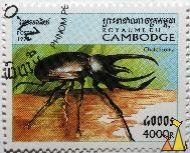 Atlas beetle, Royaume du Cambodge, Cambodia, stamp, insect, beetle, Chalcosoma atlas, Postes, 1998, 4000 R, Chalcosoma