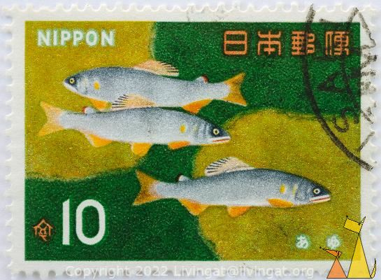 Ayu Sweetfish, Nippon, Japan, stamp, fish, 10, Plecoglossus altivelis altivelis
