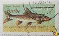 Barbe, DDR, Germany, stamp, fish, Barbus barbus, Barbe, 50, 1987