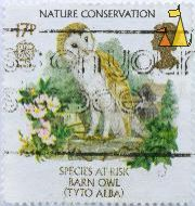 Barn Owl, UK, stamp, bird, owl, Nature Conservation, Queen Elizabeth II, 17 p, Species at Risk, Tyto alba, CELT, Europa