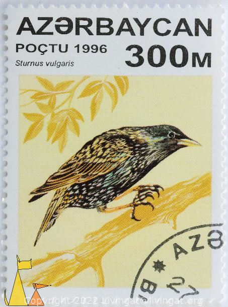 Bearded Vulture, Azerbajdzjan, stamp, bird, poctu, 1994, 25 M, Gypaetus barbatus