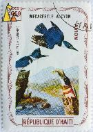 Belted Kingfisher, Republique D'Haiti, Haiti, stamp, bird, 2.5 Gourdes, Avion, Megaceryle alcyon