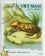 Big-headed Turtle, Viêt Nam, Vietnam, stamp, reptile, turtle, Buu Chinh, 1988, 20 d, Rua To Dau, Platysternon megacephalum