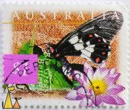 Big Greasy, Australia, stamp, insect, butterfly, Cressida cressida, 1997, $1, lotus, flower