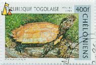Black-breasted Hill Turtle, Republique Togolaise, Togo, stamp, reptile, turtle, Postes, 1996, Cheloniens, 400 f, Geoemyda spengleri