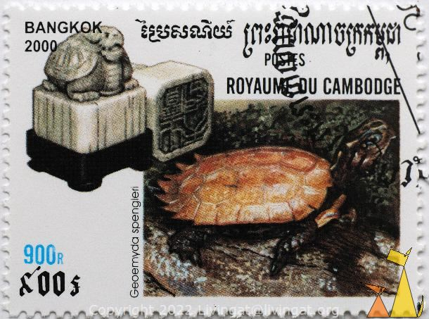 Black-breasted Hill Turtle, Royaume du Cambodge, Cambodia, stamp, reptile, turtle, Geoemyda spengleri, Black-breasted Hill Turtle, Bangkok, 2000, 900R