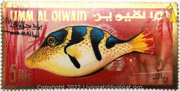 Black-saddled toby, Umm al Qiwain, UAE, stamp, fish, 5 Rls, Black-saddled toby, Canthigaster valentini