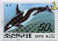 Black and White, DPR Korea, North Korea, stamp, mammal, whale, 1992, 50, Orcinus orca