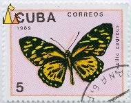 Black and Yellow Swallowtail, Cuba, stamp, insect, butterfly, Correos, 1989, 5, Papilio zagreus