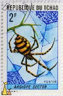 Black and yellow spider, Republique du Tchad, Chad, stamp, insect, spider, web, net, Postes, 2 F, Argiope sector, P Lambert