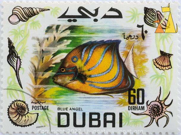 Blue Angel, Dubai, UAE, stamp, fish, 60 Diram, Postage, Pomacanthus annularis