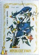 Blue Jays, Republique D'Haiti, Haiti, stamp, bird, 50 Centimes, Cyanocitta cristata
