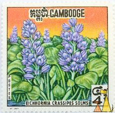 Blue Waterhyacinth, Cambodge, Cambodia, stamp, plant, flower, 4, Postes, Eichhornia crassipes solms, Eichhornia crassipes Mart Solms