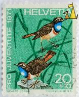 Bluethroats, Helvetia, Switzerland, stamp, bird, 1971, 20+10, Courvoisier SA, Richard Gerbig, Pro Juventute