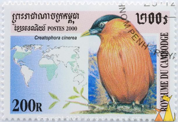 Brahminy Starling, Royaume du Cambodge, Cambodia, stamp, bird, 2000, 200 R, Postes, map, distribution map, Creatophora cinerea, Sturnia pagodarum