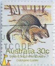 Bridled Nail-tailed Wallaby, Australia, stamp, mammal, 30 c, Onychogalea fraenata
