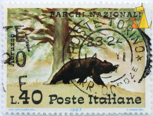 Brown Bear, Italiane, Italy, stamp, mammal, bear, Parchi Nazional, Abruzzo, L.40, Poste, 1967, C Mancioli, LPS Off Cart Val
