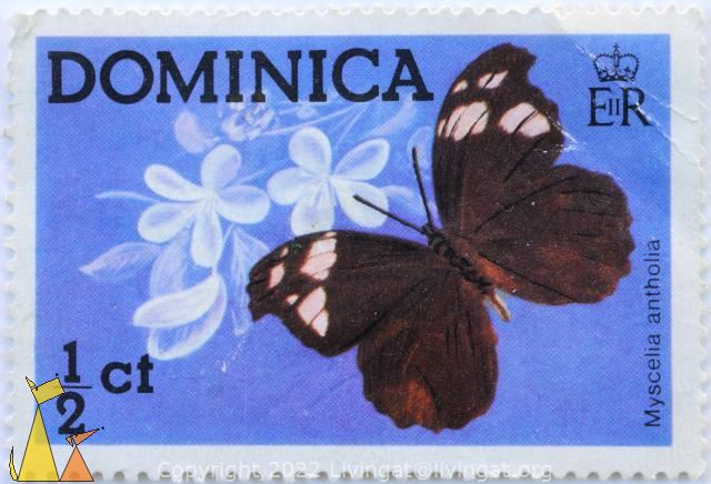 Brown Butterfly, , stamp, insect, butterfly, EIIR, ½ Ct, Myscelia antholia, 1975