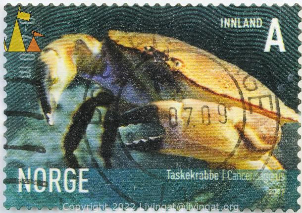 Brown Crab, Norge, Norway, stamp, shellfish, Innland, A, 2007, Taskekrabbe, crab, Cancer pagurus