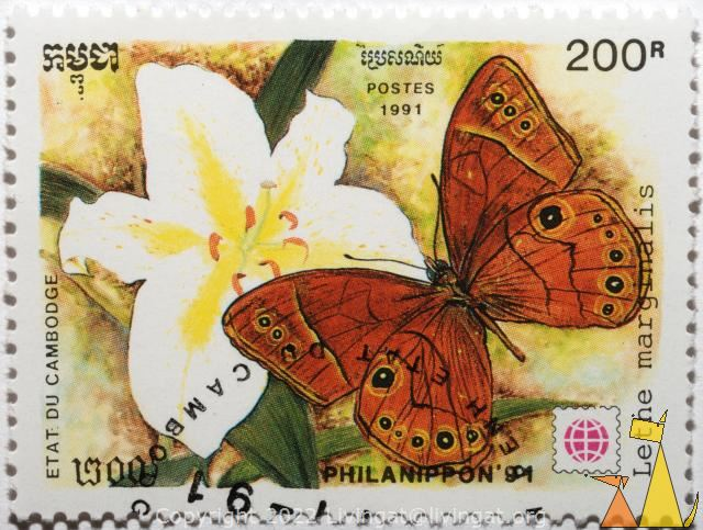 Brown butterfly on orchid, Etat du Cambodge, Cambodia, stamp, insect, butterfly, Postes, 1991, Philanippon'91, 200 R, Lethe marginalis