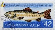 Brown trout, Bulgaria, stamp, fish, 1983, 42 cm, nowa, blue, Salmo trutta fario
