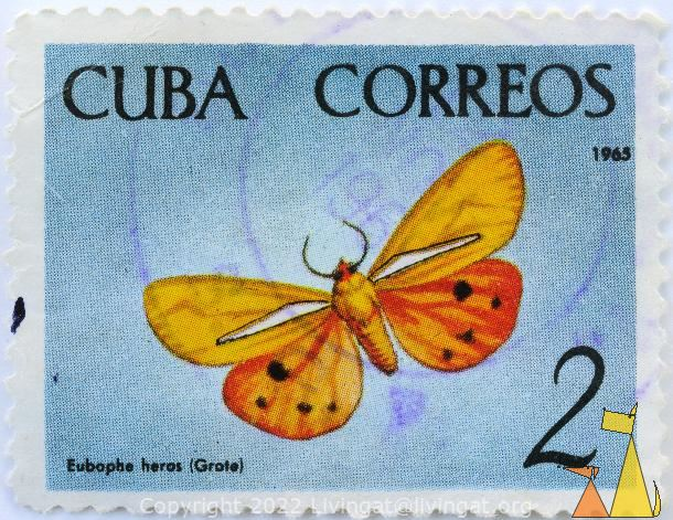 Brownish Moth, Cuba, stamp, insect, butterfly, 2, 1965, Grote, Correos, Eubaphe heros, Holomelina heros