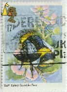 Buff Tailed Bumble Bee, UK, stamp, insect, bee, 17 p, QEII, Queen Elizabeth II, Bombus terrestris