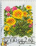 Buttercups and Clovers, Sverige, Sweden, stamp, privat, post, M Jacobson, 1993, Smörblomma, 2.60, Ranunculus acris, Trifolium pratense