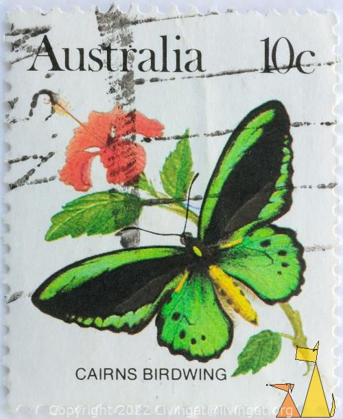 Cairns Birdwing, Australia, stamp, insect, butterfly, 10 c, Ornithoptera euphorion