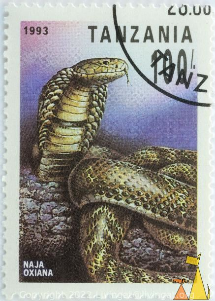 Central Asian Cobra, Tanzania, stamp, reptile, 1993, 100, snake, Naja oxiana