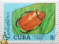 Chafer, Cuba, stamp, insect, beetle, bug, correos, 1988, Coleópteros, Ohaus, Heterosternus oberthuri