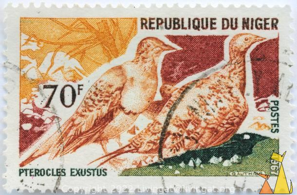 Chestnut-bellied Sandgrouse, Republique du Niger, Niger, stamp, bird, 70 F, Postes, 1967, Gauthier, Pterocles exustus