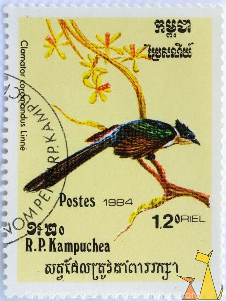 Chestnut-winged Cuckoo, RP Kampuchea, Cambodia, stamp, bird, 1984, 1.20 Riels, Postes, Linne, Clamator coromandus