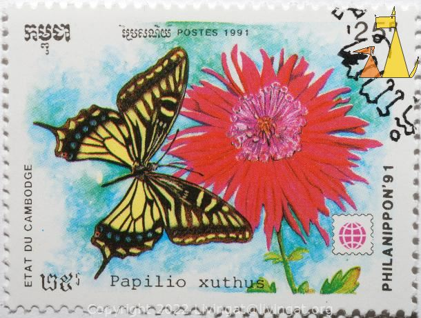 Chinese Yellow Swallowtail, Etat du Cambodge, Cambodia, stamp, insect, butterfly, Postes, 1991, Philanippon'91, 25 R, Papilio xuthus