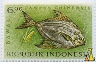 Chinese silver pomfret, Republik Indonesia, Indonesia, stamp, fish, 6.00, Bawal, Pampus chinensis