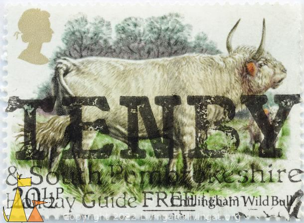 Cillingham Wild Bull, UK, stamp, mammal, farming, cattle, Queen Elizabeth II, 20½ o, Tenby, South Pembrokeshire, Bos taurus