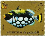 Clown on Gold, Fujeira, Fujairah, stamp, fish, Postage, gold, Imp SLIM Liban, 30 Dh, Balistoides, Balistoides conspicillum