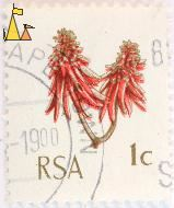 Coastal Coral Tree, RSA, South Africa, stamp, plant, tree, flower, 1 C, Cape Town, Erythrina caffra