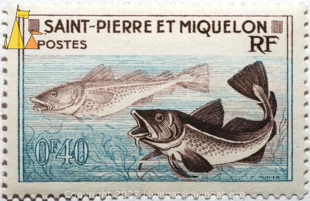 Cod, Atlantic and Greenland, Saint-Pierre et Miquelon, Saint Pierre and Miquelon, stamp, fish, Postes, RF, 0.40 F, P Munier, Gadus ogac, Gadus morhua, Atlantic cod, Greenland cod