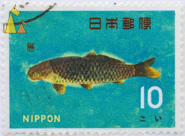 Common Carp, Nippon, Japan, stamp, fish, turqoise, 10, Cyprinus carpio carpio